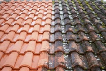 Traitement toiture et démoussage